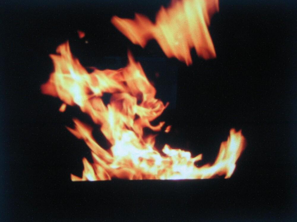 Fire dog by twa5150