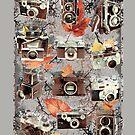 Vintage cameras ( Autumn ) by lab80