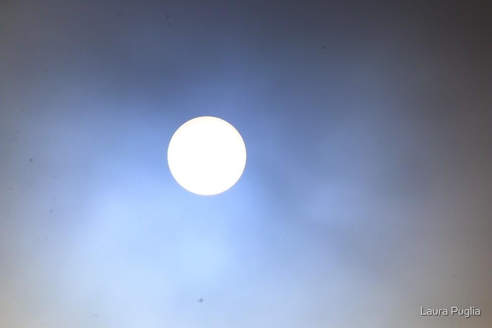 Sun by Laura Puglia