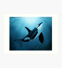 """The Dreamer"" by Amber Marine ~ orca / killer whale painting, art © 2015 Art Print"