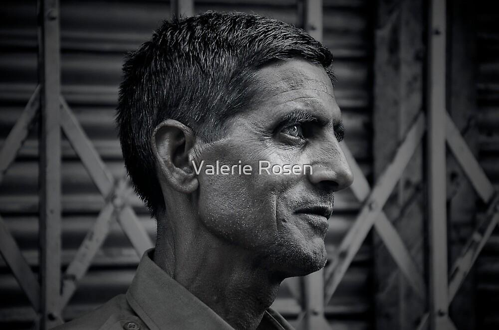 Portrait of a Stranger by Valerie Rosen