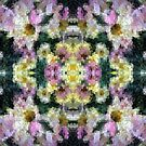 Abstract Mosaic in Yellow Pink Green by Beverly Claire Kaiya