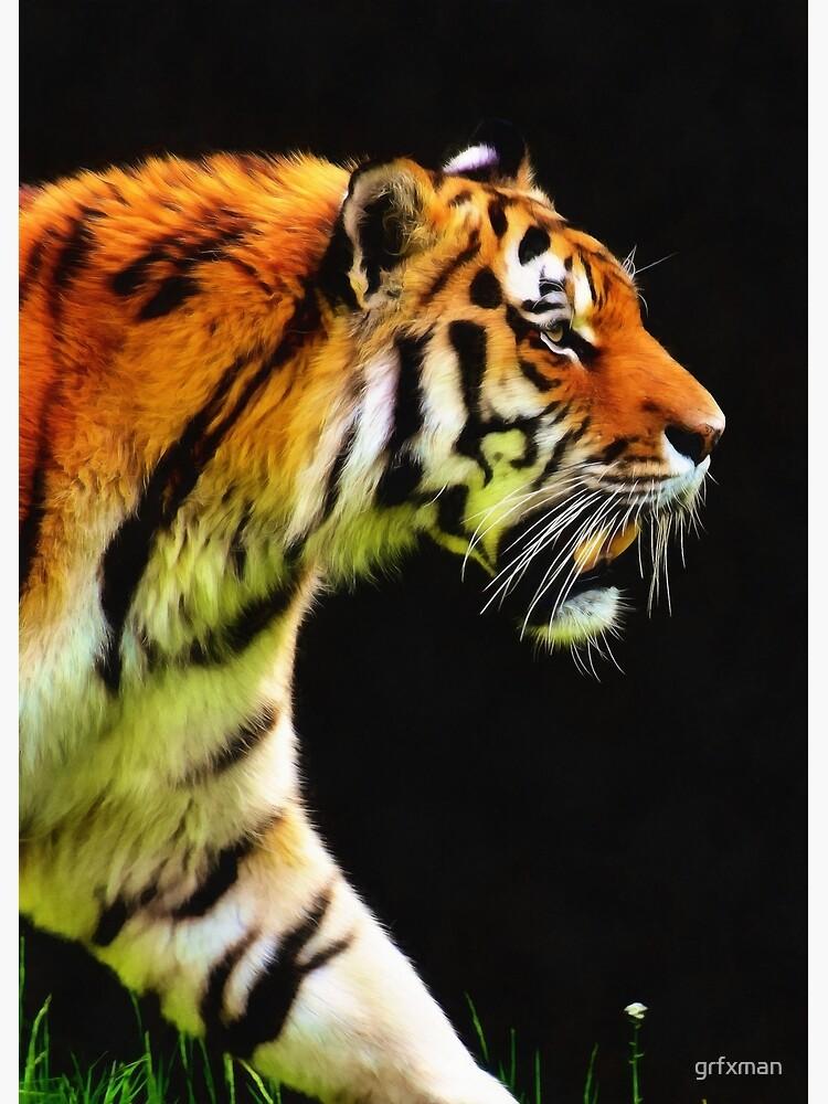 EDDIE'S TIGER by grfxman