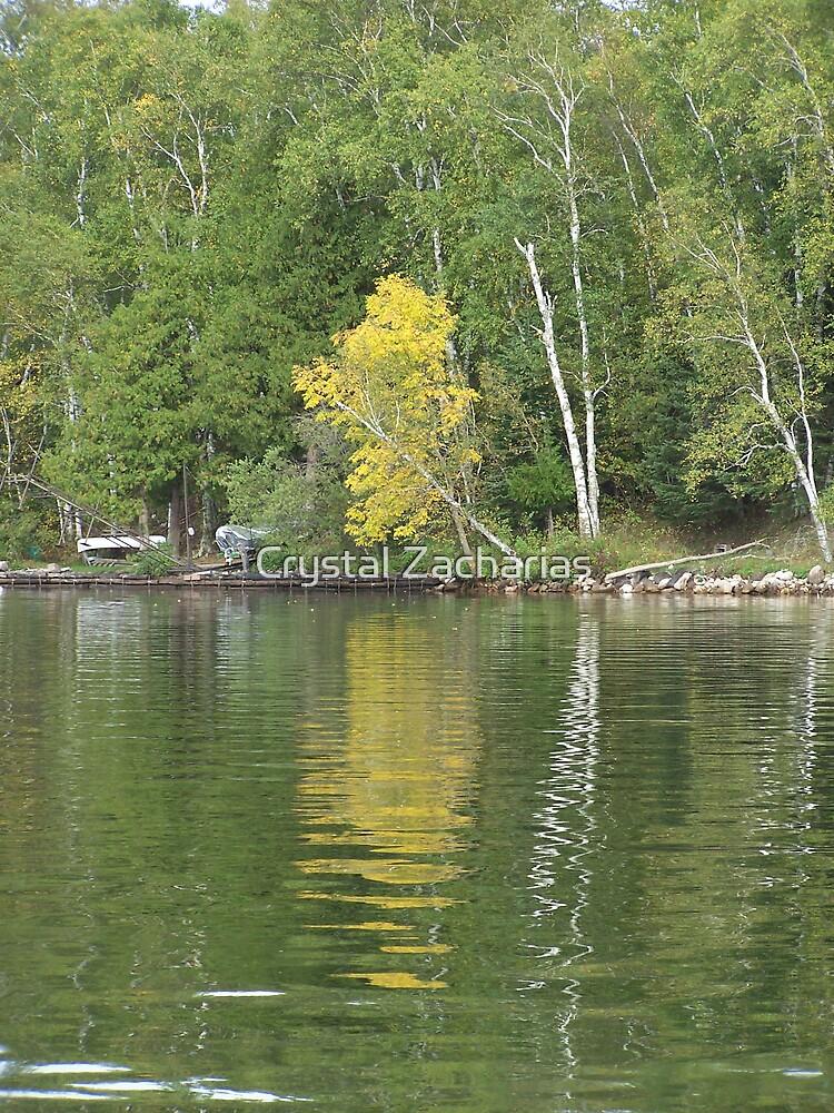 Fall at the Lake by Crystal Zacharias