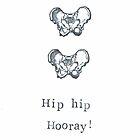 Hip Hip Hooray! by bluespecsstudio