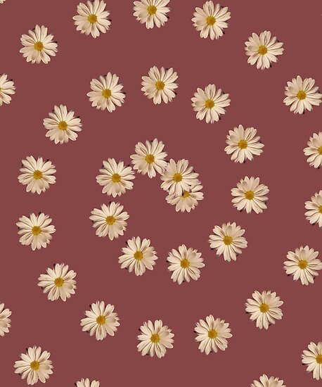 Spiral Daisy Flower Aesthetic By Morgany