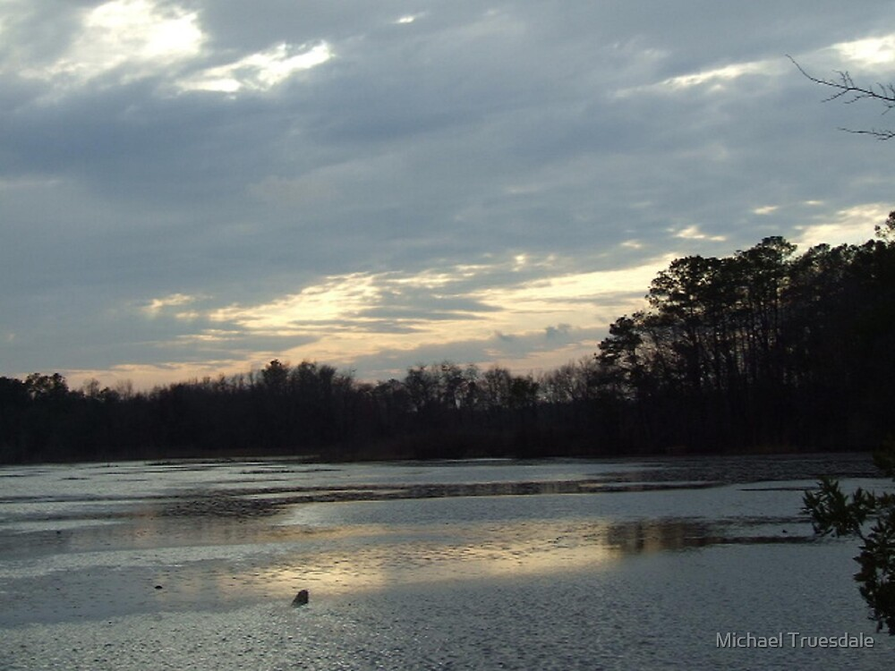 Pond Sunset by Michael Truesdale