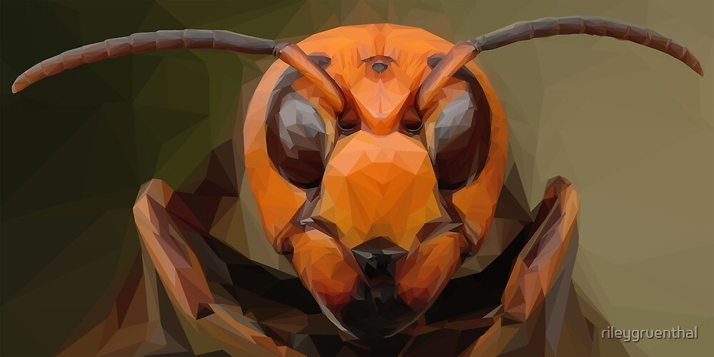 low poly insect by rileygruenthal