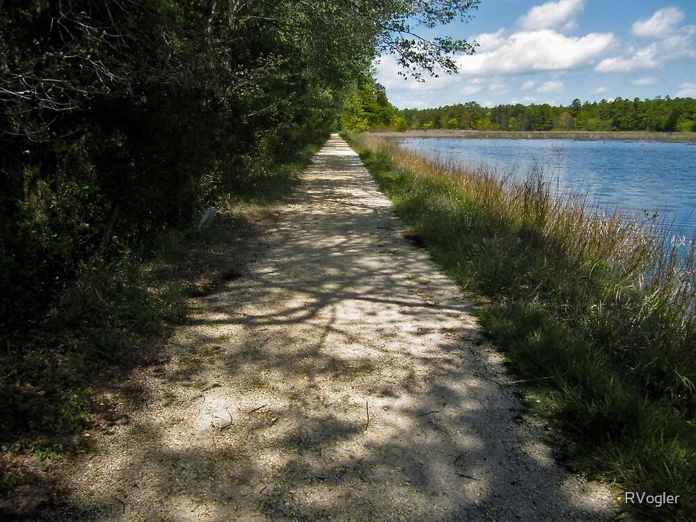 """Bog Path"" by RVogler"
