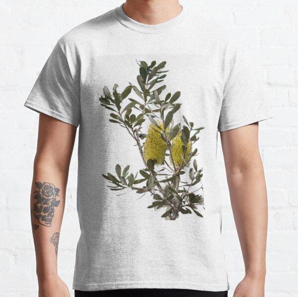 Banksia SYD02 Classic T-Shirt
