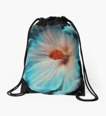 3953 Drawstring Bag