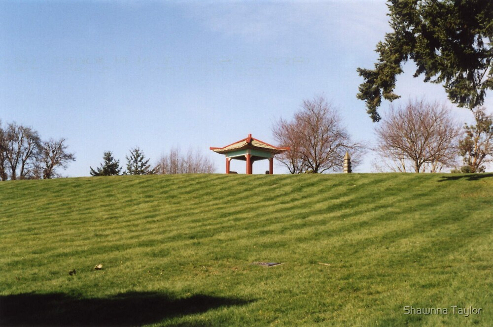 Above The Hill Chinese Memorial Architecture by Shawnna Taylor