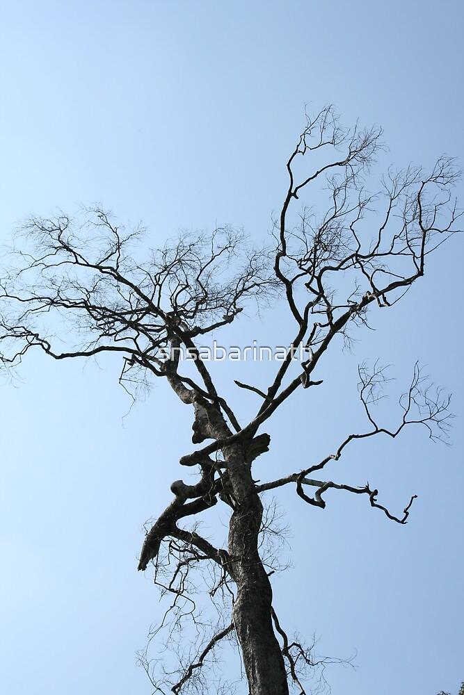 tree by snsabarinath