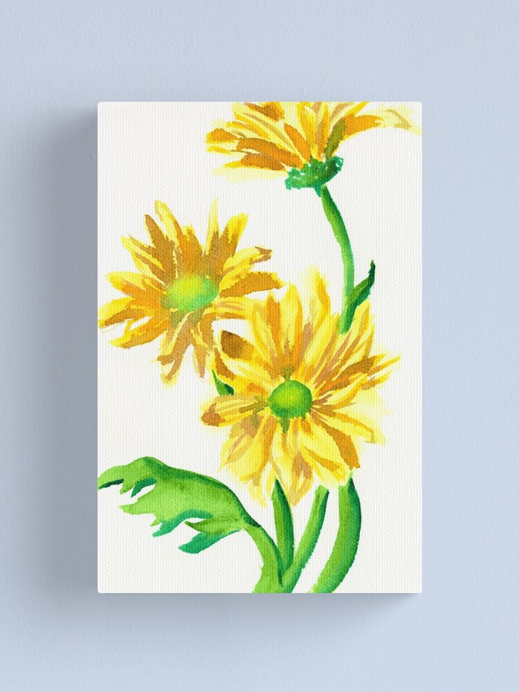 Three Yellow Daisies Watercolor Painting Floral Art Canvas Print By Shannonconnolly Redbubble