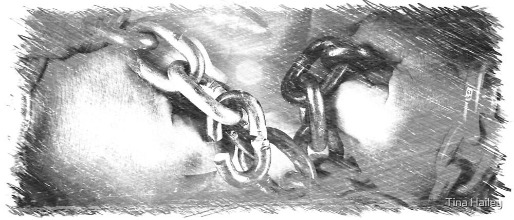 Broken Link by Tina Hailey
