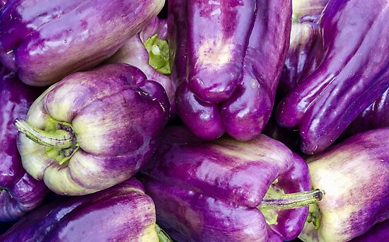 Purple bell peppers on display by Zigzagmtart