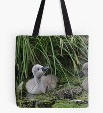 This looks tasty - cygnets in a pond Tote Bag