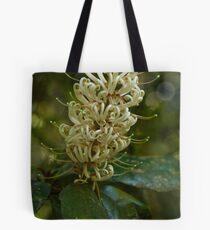 Springbrook 1 Tote Bag