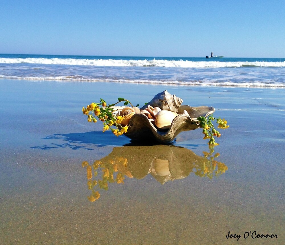 Shells In A Shell With Yellow Flowers In The Surf by Joey O'Connor