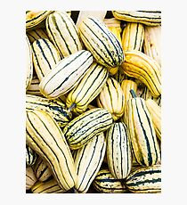 Delicata squash on display Photographic Print