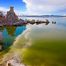Colors of Mono Lake by Barbara  Brown