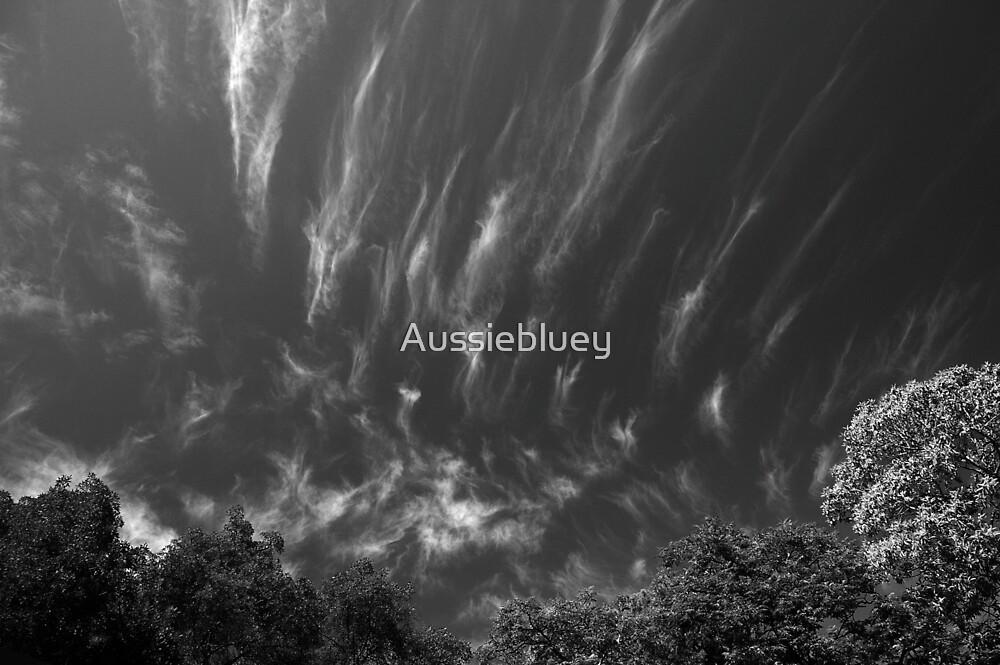Sky in Black & White. by Aussiebluey