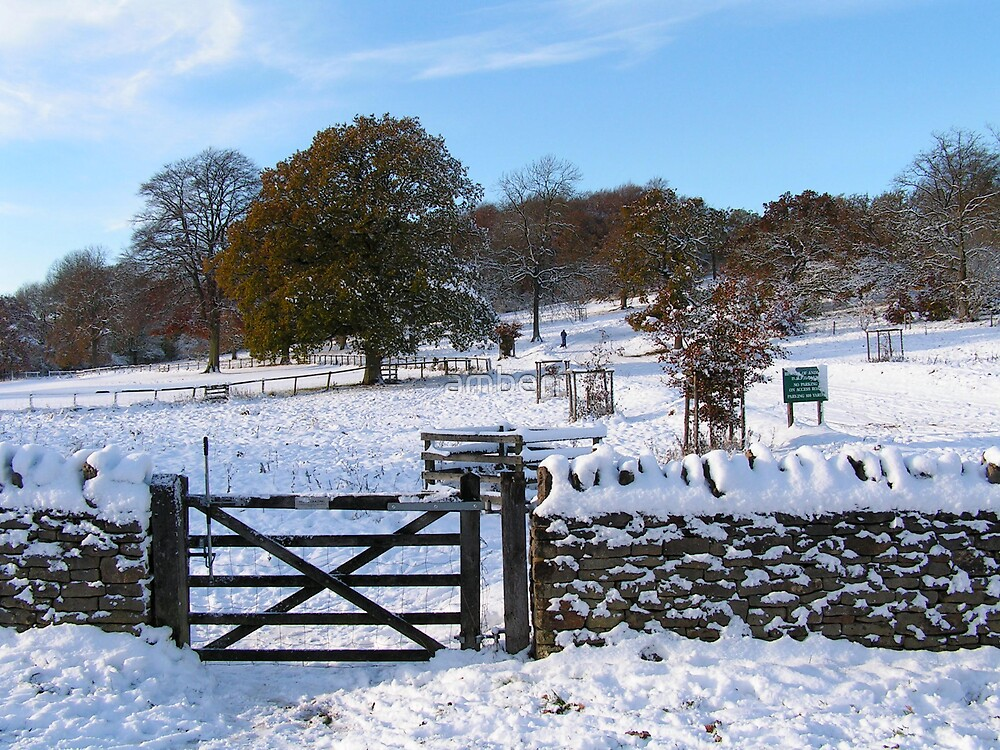 Snowy Gloucestershire England UK by amberr