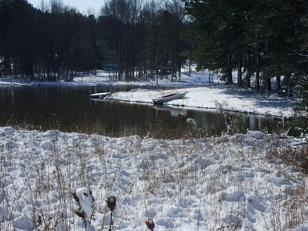 tennesse winter chill by wonda