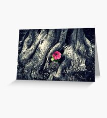 Lone Pink Flower Greeting Card