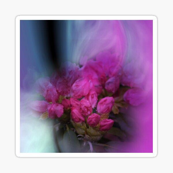 rhododendron buds  Sticker