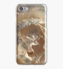 Raindrops on a rose iPhone Case/Skin