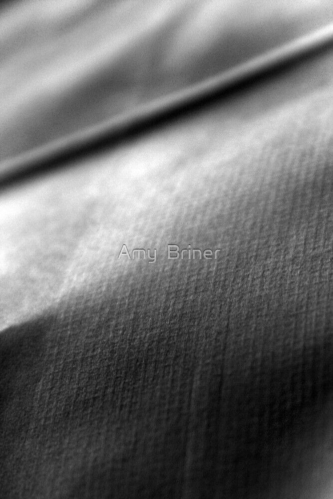 textures of a paper bag by Amy  Briner