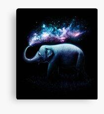 Elephant Splash Lienzo