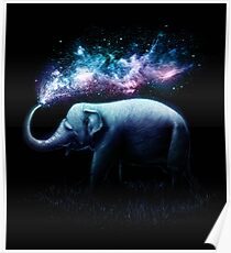 Elefant-Spritzen Poster