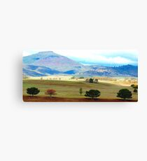 Valley of Colour- Southern NSW, Australia Canvas Print