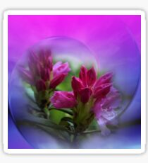 rhododendron blossoms Sticker