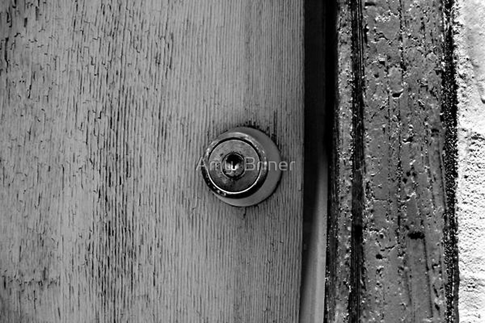 Closed Doors by Amy  Briner