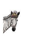 Zebra flowers by Jenny Wood