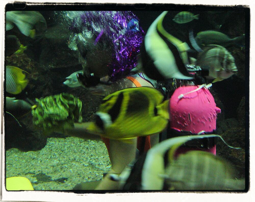 Aquarium by Photoflirt