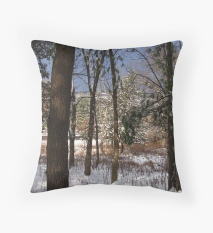Mountain view in winter. Throw Pillow
