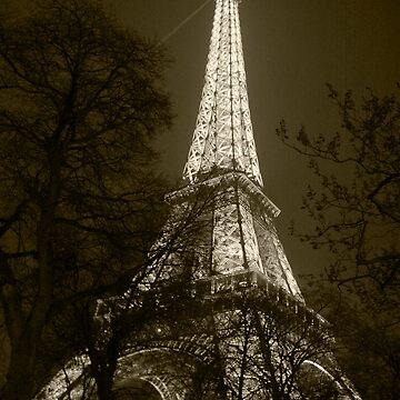 Eiffel Tower 3 by tiggatim