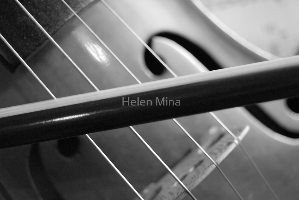 Violin Black and White by Helen Mina