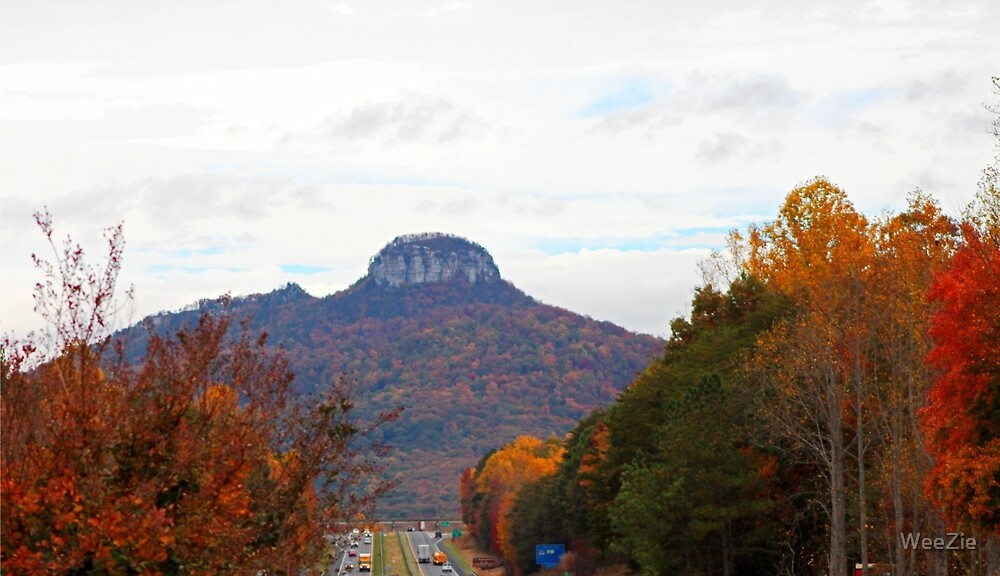 Mountain In the Distance by WeeZie