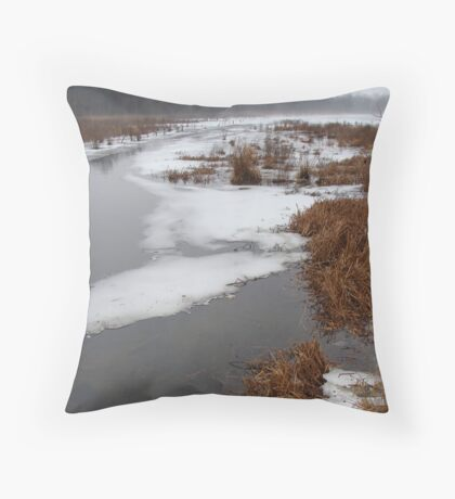 Thin ice. Throw Pillow