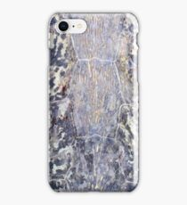 Sea Turtle Shell Abstract iPhone Case/Skin