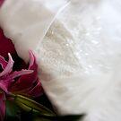 Wedding Dreams  by julieann