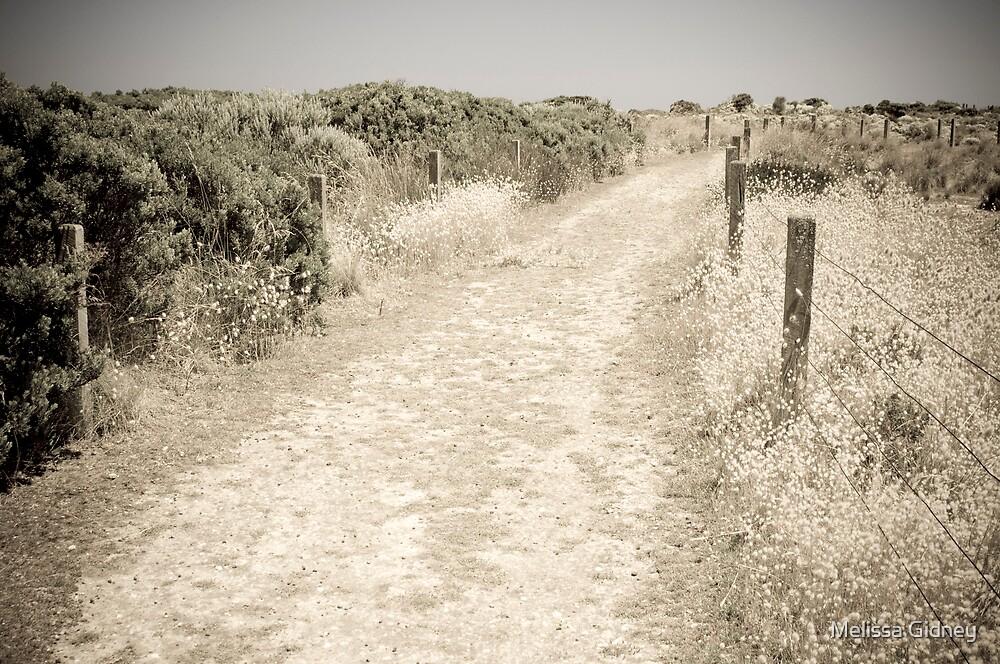 Great Ocean Road VII by Melissa Gidney