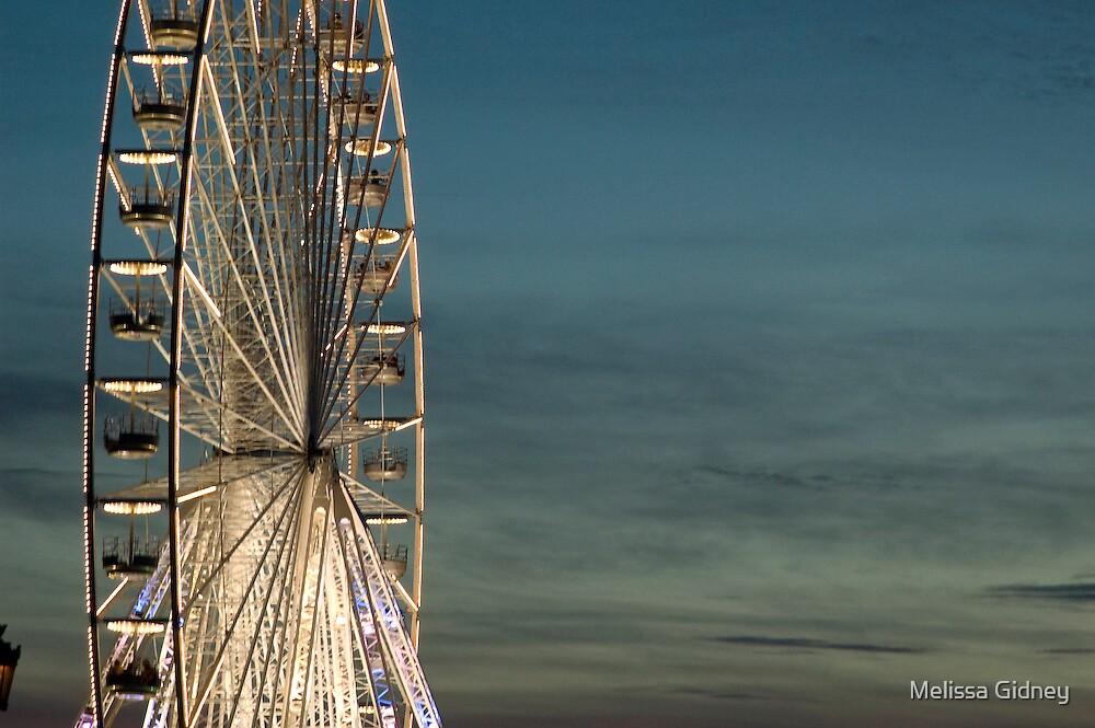 Carousel by Melissa Gidney