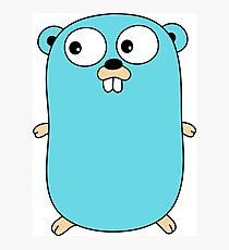 Golang Gopher Photographic Print