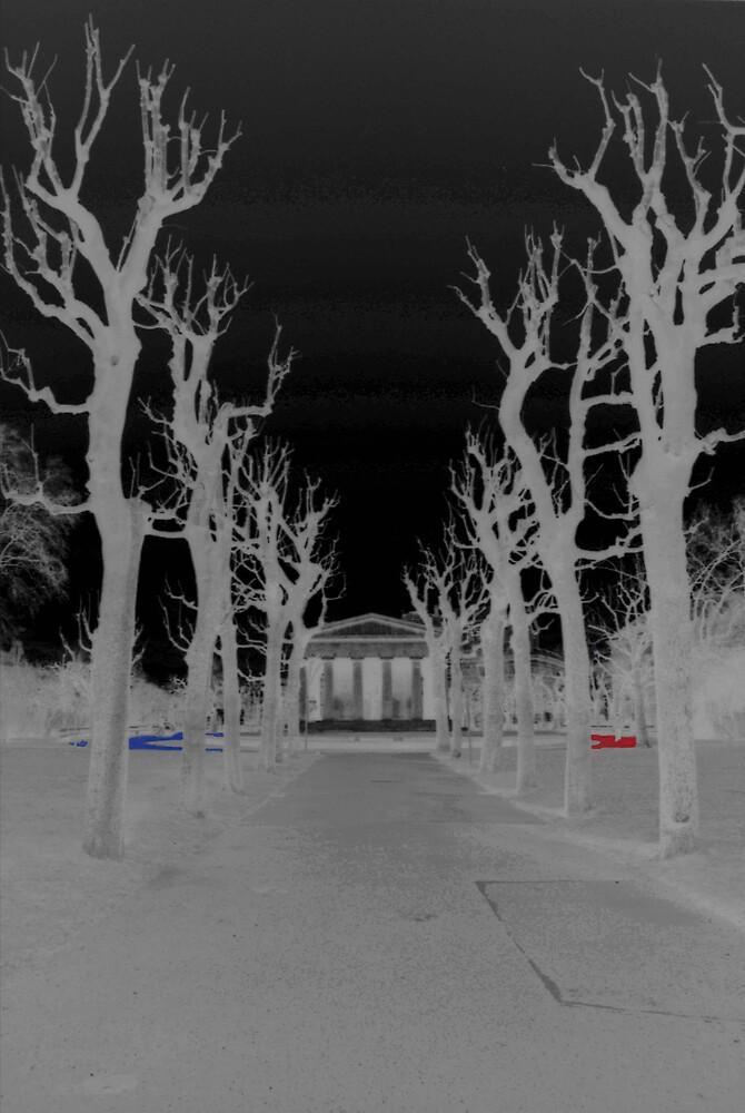 Winter II by Michele Binder